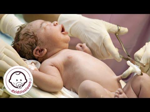 Współpraca Na Sali Porodowej - Porady Położnej