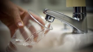 WATER WORMS IN KITCHEN TAP WATER