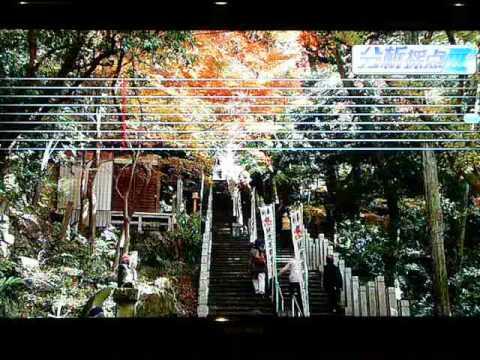 FictionJunction YUUKAの画像 p1_31