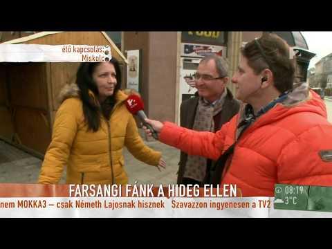 Miskolci Farsang: Nemcsak enni, hanem sütni is lehet majd a fánkokat - tv2.hu/mokka