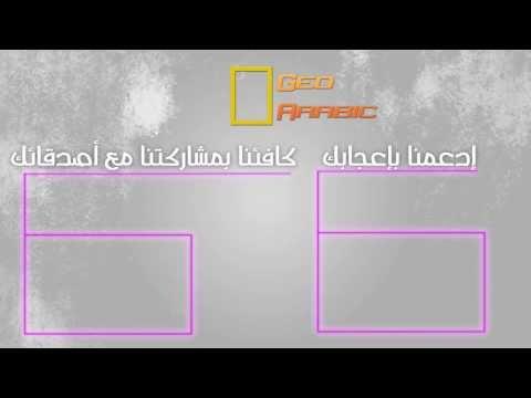 Geo Arabic Channel Outro .... By Fennec Designs.