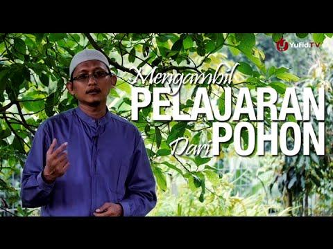 Ceramah Pendek: Mengambil Pelajaran Dari Pohon - Ustadz Badru Salam, Lc
