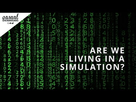 Are We Living in a Simulation? - Casual Conversations