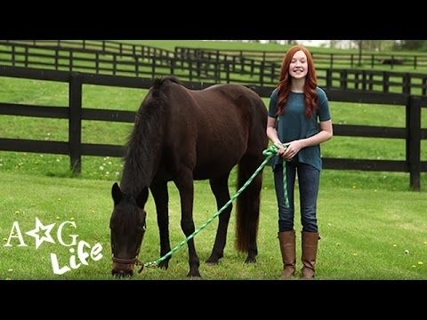 American Girl: Miniature Horses, Ponytail How-To Hacks & More! | #TeamAGLife Ep. 30 | American Girl