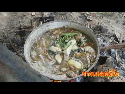 ผู้บ่าวไทบ้านพาเลาะ EP1 ไปลงปลากินข้าวป่า