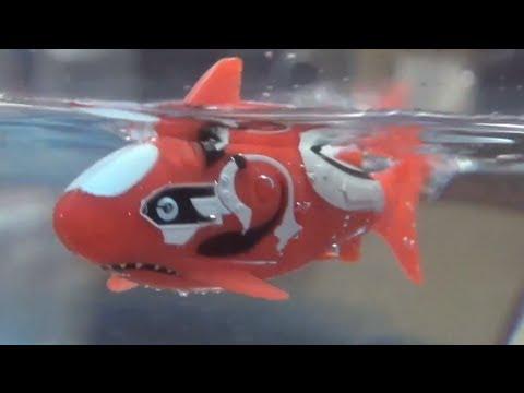 Robo Fish: A Robotic Toy for Bathtime Play