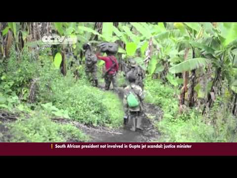 M23 Rebels and Army clash in Democratic Republic of Congo.