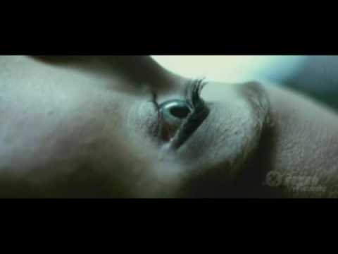 Sorority Row Death Scene - Chugs - Death By Alcohol