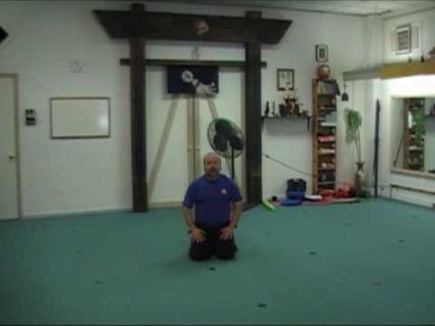 Learn Ninjutsu - Basic Ninja Taihen - pt1 Image 1