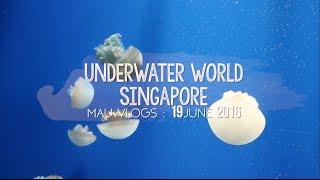 VLOG: Underwater World Singapore | 19.06.16