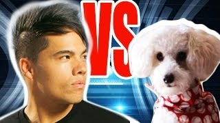 MAN vs. DOG