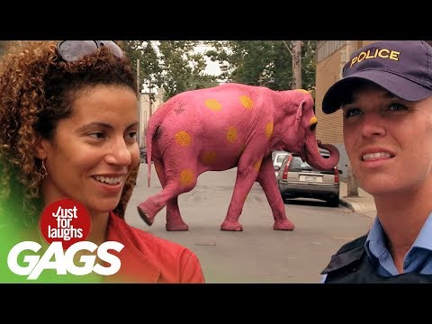 Best of Just For Laughs Gags – Most Crazy Complex Pranks