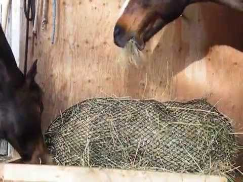 diy horse horselogos stable slow hay flip pinterest best permaculture stables feeder on barn images feeders and stalls