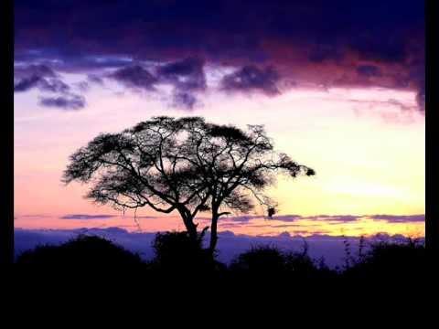 Paul Simon Under African Skies HQ
