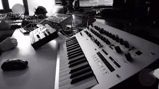 Monday Dub (Octatrack Minilogue Minibrute 0-Coast DX7 IID....)