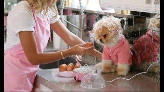 Roz's Kitchen EP-2  - الحلقة الثانية من مطبخ روز