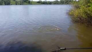 рыбалка в золочевском районе