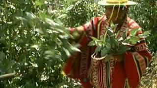 La cosmovisión andina de los kallawayas