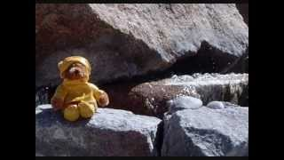 Watch Jerry Garcia Teddy Bears Picnic video