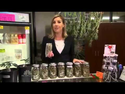 A New Era Begins in the U.S. as Marijuana is Legalized (Dec 6, 2012 - NBC)