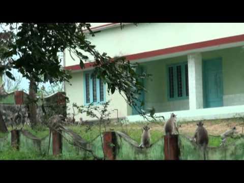 Hanuman35.mpg thumbnail