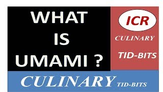 WHAT IS UMAMI ? BY ICR