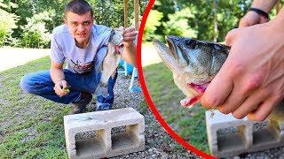 Largemouth Bass CATCH CLEAN COOK!