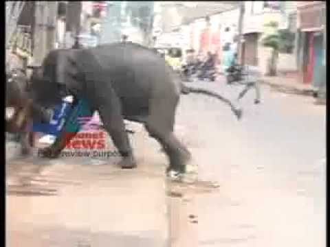 Malayalam News Live (16).flv video