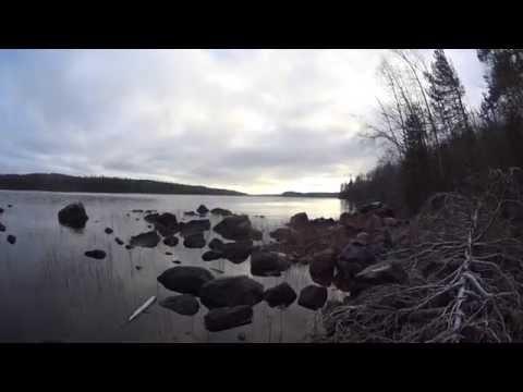кедрозеро рыбалка видео