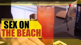 Bartender Store TV   Sex on The Beach