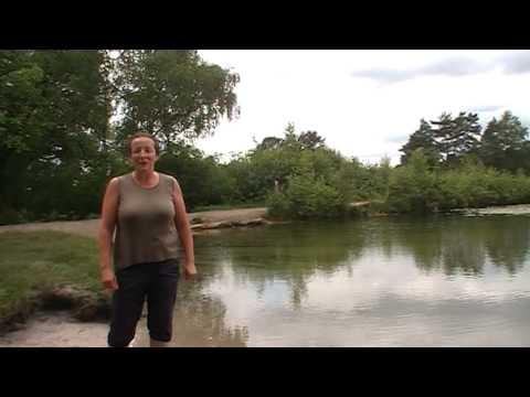 Duik in natuurwater