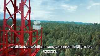 Lesnoy Dozor - system for forest monitoring and early detection of forest fires