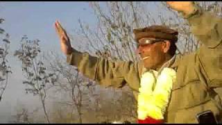 Bahram Shahzada