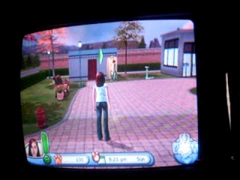 The Sims 2 Pets Ps2 Gratis