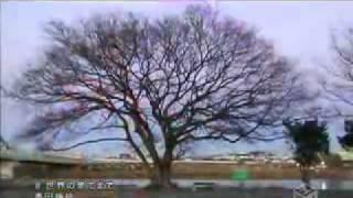 Watch Takada Kozue Sekai No Hate Made video