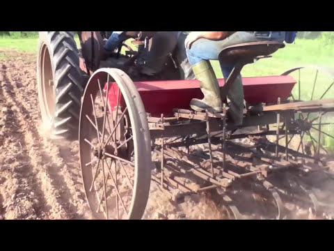 Old Massey Harris Seed Drill Planting Oats