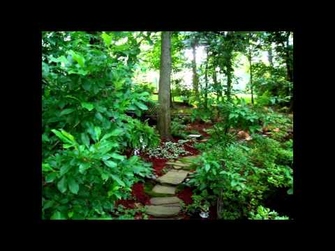 Creative Woodland garden ideas