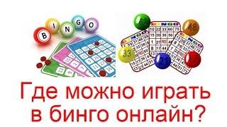 proverit-bingo-onlayn