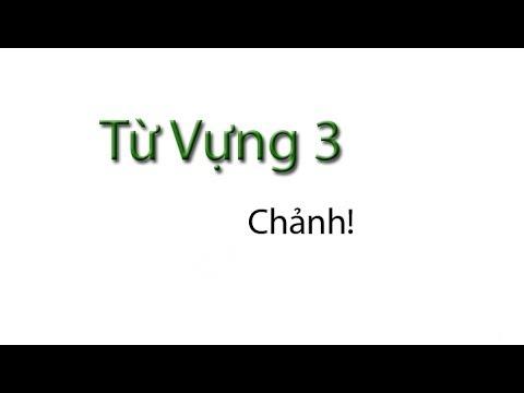 Tu Vung 3 / Vocabulary: Chanh
