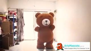 adults inflatable Teddy Bear mascot costume for party cute mascot costumes for sale