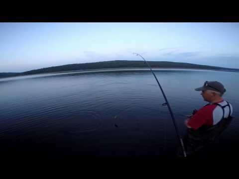 рыбалка охота на ангаре