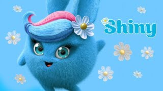 Cartoons for Children | SUNNY BUNNIES - BEST OF SHINY | Funny Cartoons For Children