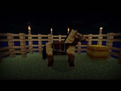 Minecraft Tutorial - How To Make Horse Armor