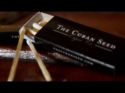 Boutique Cigar Manufacturer - The Cuban Seed Cigar Co.