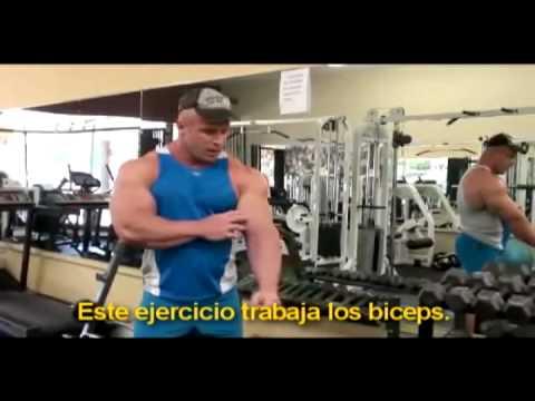 Rutina de Biceps