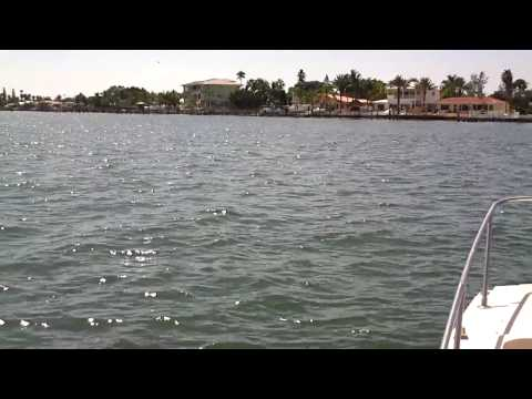 St.Petersburg Fishing Fl Charters Catching Tarpon on Fat Cat