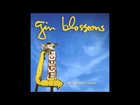 Gin Blossoms - Heart Shaped Locket