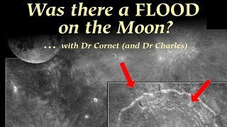 WAS THERE A FLOOD ON THE MOON? RETHINKING MOON'S ORIGIN AND COMPOSITION