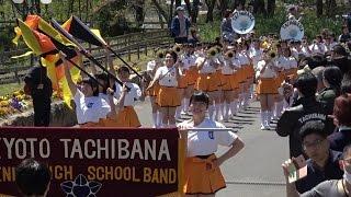 京都橘高校 2017ブルーメンパレード Kyoto Tachibana S H S Band