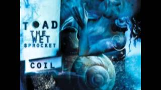 Watch Toad The Wet Sprocket All Things In Time video